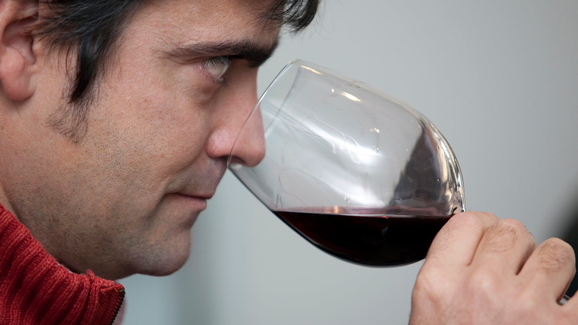 Elaboración de vino con uva Tintilla de Rota